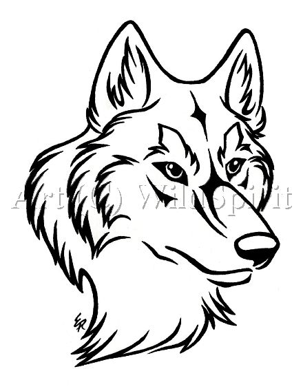 Lineart Wolf Tattoo : Pinterest the world s catalog of ideas