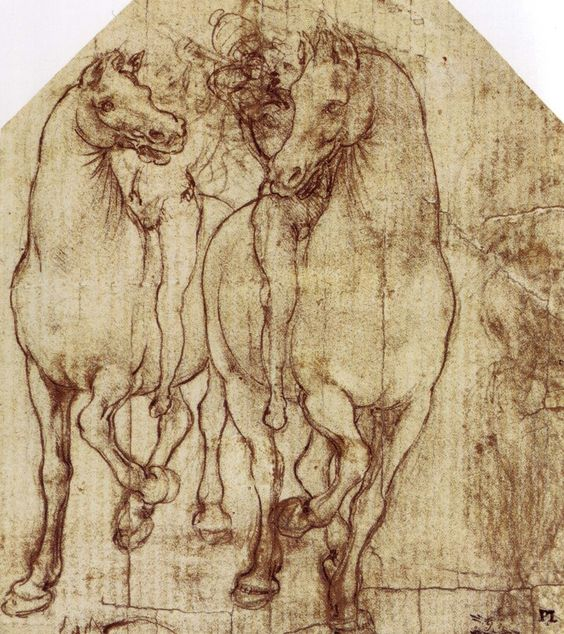 56 dessins de Leonard De Vinci   Etude et Chevaux