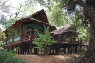 Samburu Intrepids Club- This luxurious tented lodge offers 30 modern and newly refurbished tents with a private view over the wildlife-rich riverbanks of the Ewaso Nyiro river in Samburu Game Reserve. All the tents are large and spacious under palm-thatched roofs with netted screens to allow for the river breeze to keep them cool and give you stunning views of the land that is Samburu.