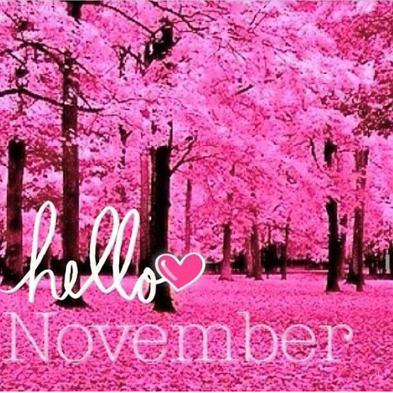 Hello November! Wow can you all believe Christmas is next month, 2014 is moving! #PinkCulture