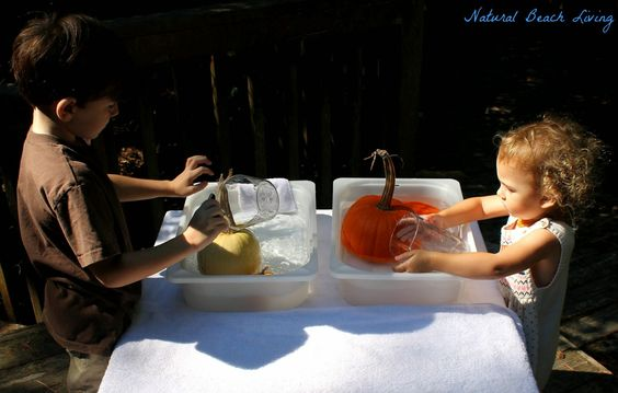 Pumpkin Washing Station - practical life skills