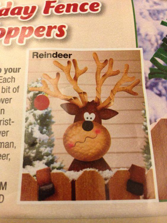 Reindeer on fence