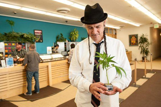 EROL GURIAN PHOTOGRAPHY | Cannabis-Aktivist und Geschäftsmann Steve D'Angelo in seinem Harborside Health Center in Oakland, Nordkalifornien.