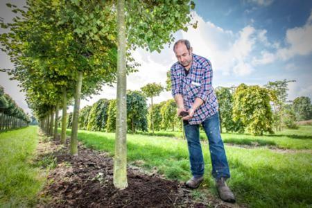 Organic Compound Fertilizer 12-1-0 for biological cultivation | Ferm O Feed https://www.fermofeed.com/products/biological-fertilizers