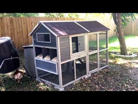 11+ Youtube how to build a chicken coop ideas in 2021