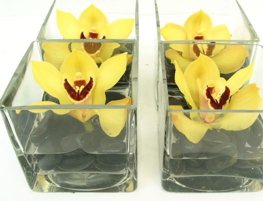 These are cube vase floral arrangements each featuring a single yellow cymbidium bloom atop black river rocks.  See our entire selection at www.starflor.com.  To purchase any of our floral selections, as gifts or décor, please call us at 800.520.8999 or visit our e-commerce portal at www.Starbrightnyc.com. This composition of flowers is generally available for same day delivery in New York City (NYC). SQ017