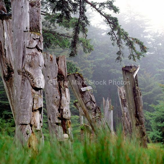 Ancient poles returning to nature in Haida Gwaii