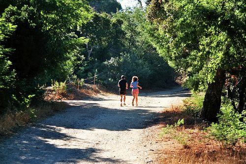 Intenta trotar o realizar caminatas muy temprano en la mañana o cuando el sol haya bajado para evitar deshidratación.