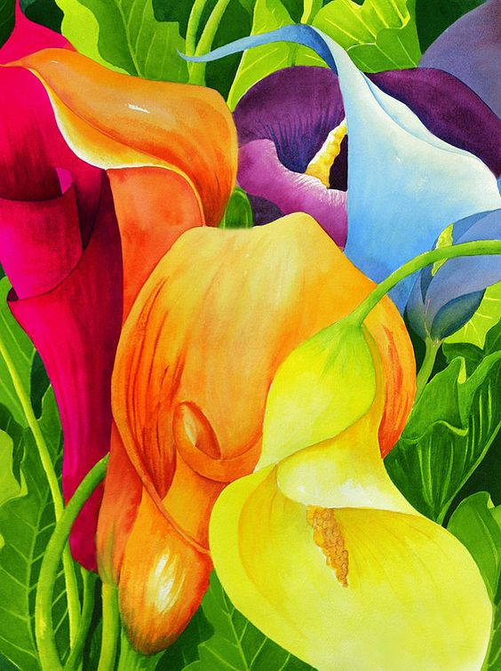 Calla Lily Rainbow Painting by Janis Grau - Calla Lily Rainbow Fine Art Prints and Posters for Sale
