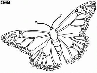 stencil ala de monarca - Buscar con Google