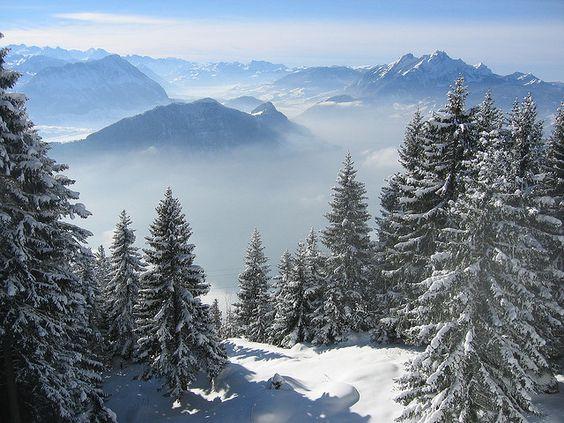 Weggis, Switzerland by Philip Larson, via Flickr