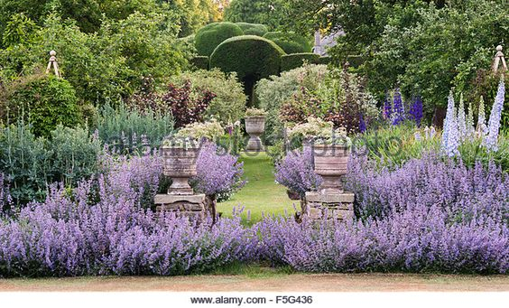 Levens Hall, Cumbria, UK. A famous topiary garden. The mixed Pastel Borders near the bowling green, with catmint -