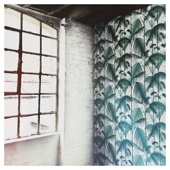 Pretty sweet shoot location this morning - coveting the #palmtree wallpaper big time. #dwell #interiors #photography #work