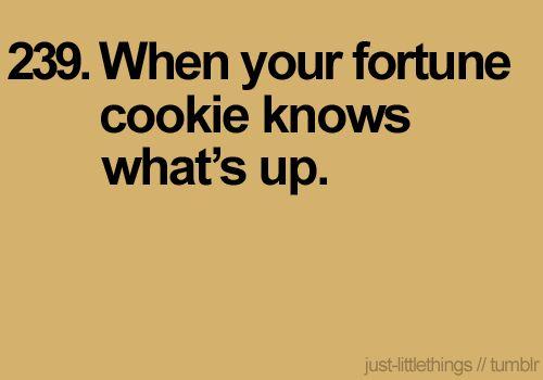 Haha seriously!