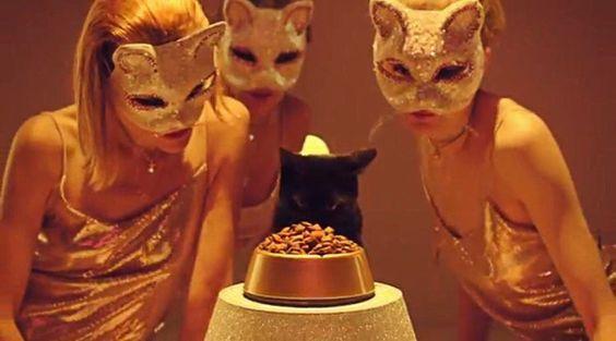 ヤマト運輸が公開!ダンスミュージック風にリメイクされた「ネコふんじゃった」のミュージックビデオ – ねこナビ