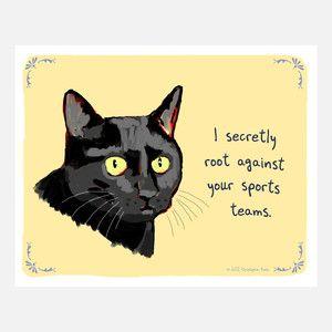 Black Cat 10x8