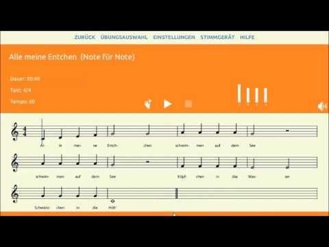 Wie funktioniert Melodicus?