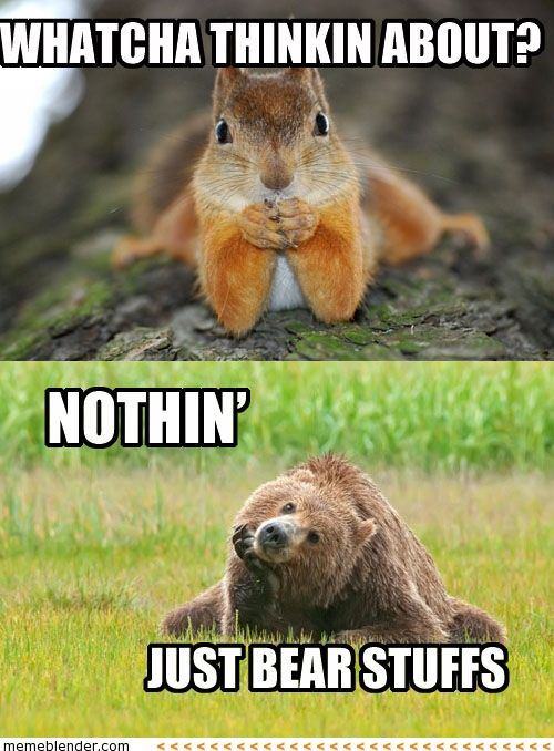 25 Super Sweet Funny Thinking About You Memes Sayingimages Com Funny Animal Pictures Cute Animals Funny Animals