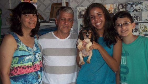 BEAGLE CANIL PEDRA DE GUARATIBA AMORA - Nascimento: 16/12/14. Proprietário: José Luiz. Facebook: http://pt-br.facebook/canilpedradeguaratiba Instagram: http://instagram.com/canilpguaratiba #canilpedradeguaratiba #beaglecanilpedradeguaratiba #beagle