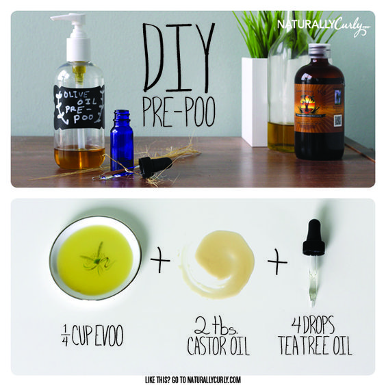 Diy olive oil pre poo curly hair treatment olive oil hair and tea tree oil - Diy uses for olive oil help from nature ...