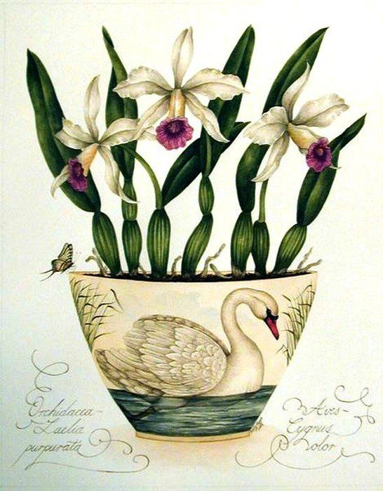 Acuarelas flores y pájaros; Kelly Higgs - Taringa!