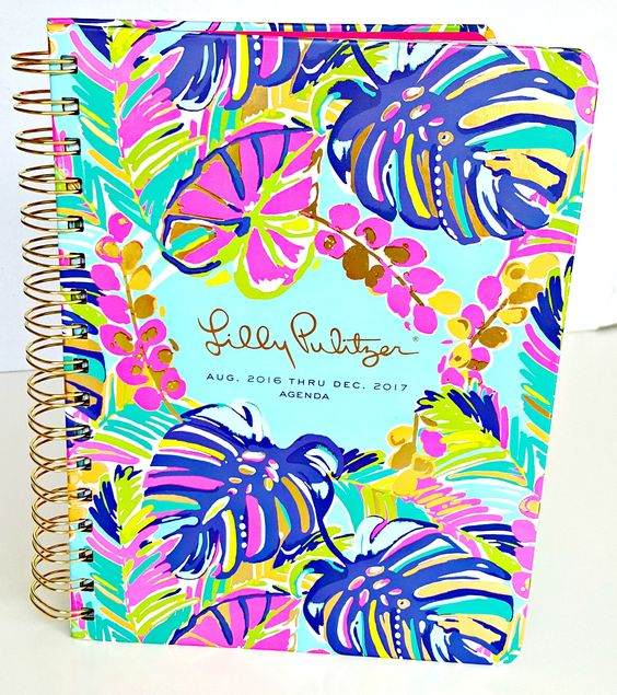 The 2016-2017 Lilly Pulitzer agenda is finally here and I have an in-depth review with all the details you need to pick the perfect one for your lifestyle.