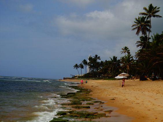 Praia Pedra do Chapeú, Praia do forte, bahia, brazil. visite: http://vanezacomz.blogspot.com.br/2014/11/praia-do-forte-piscinas-naturais-na.html