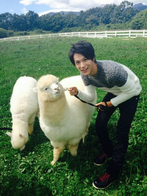羊と中川大志