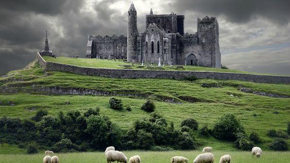 Pendant ce temps en Irlande.