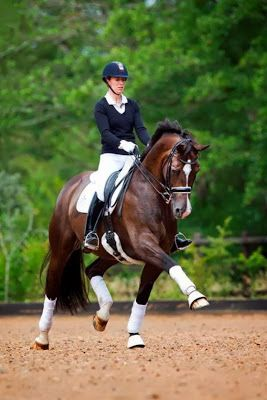 Charlotte Dujardin & Valegro. I never get tired of looking at this pair.   kbchorsesupplies.com