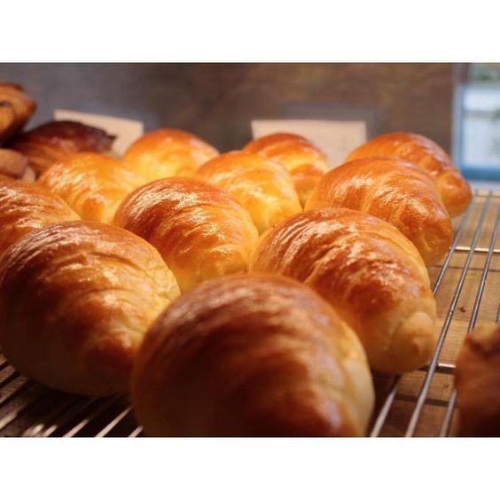 7月5日は臨時休業を頂きます | OPAN オパン|東京 笹塚のパン屋