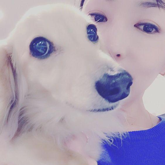 犬と松雪泰子