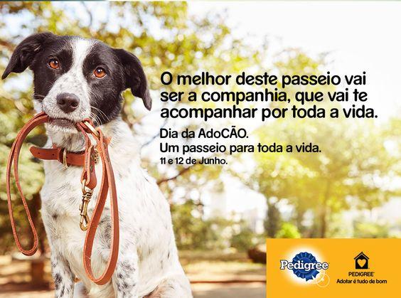 Eu apoio o dia da AdoCÃO! Informe-se aqui, venha com a gente e adote: http://bit.ly/adocao16 #diadaadocao #pedigree