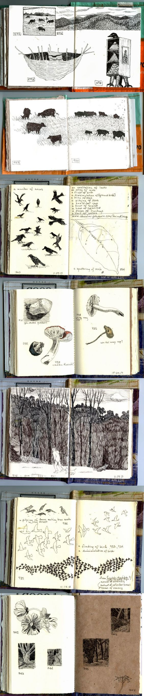 Daily journal by Gwen Diehn, of Real Life Sketchbook. Interesting blog of everyday life & observations; reminds me of Thoreau's journals. #naturalist