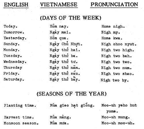 Literal translation Essay Examples