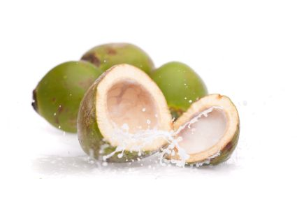 On Dec. 2008 the Journal of Food Chemistry and Toxicology published an animal study entitled Comparative evaluation of the hypolipidemic effects of coconut water and lovastatin in rats fed fat-cholesterol enriched diet. The study conclusion was as follows: Coconut water has lipid lowering effect similar to the drug lovastatin in rats fed fat-cholesterol enriched diet.