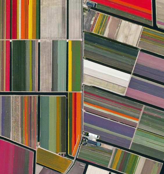 Tulip fields in Lisse, Netherlands photographed from space. From the book Overview: A New Perspective by Benjamin Grant