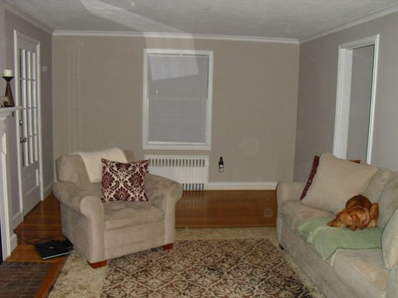 Versatile Gray Paint | Living Room, Sherwin Williams ...