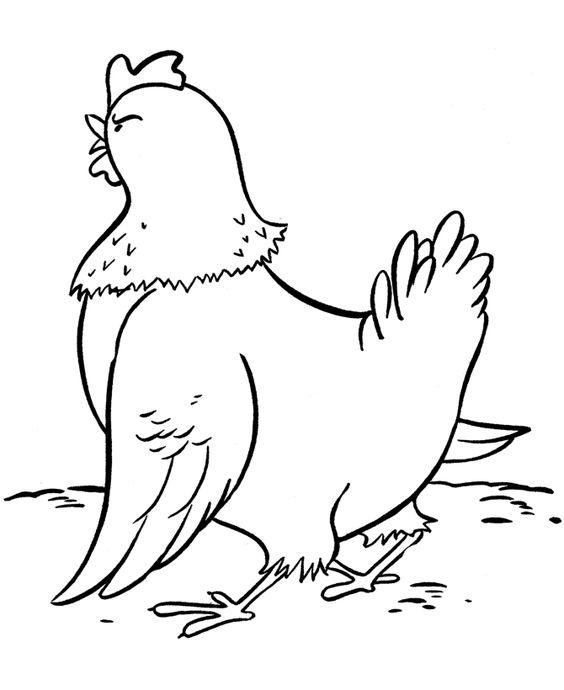 Farm animal chicken coloring page | Chicken