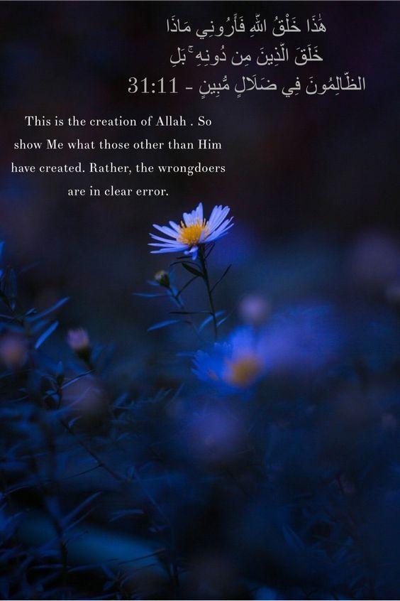 بوستات انجليزى صور بوستات انجليزى مترجمة للغة العربية بفبوف Quran Quotes Islamic Quotes Quran Verses
