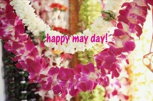 Pin By Sondra Scofield On Months Flower Lei Hawaiian Flowers Kauai Vacation
