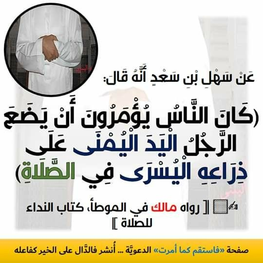 Pin By Https Youtu Be 9jxq8pgjryi On القرآن و السنه
