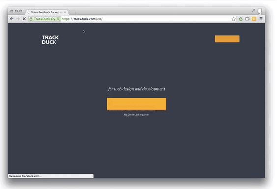 TrackDuck - visual feedback tool for web design and development ...