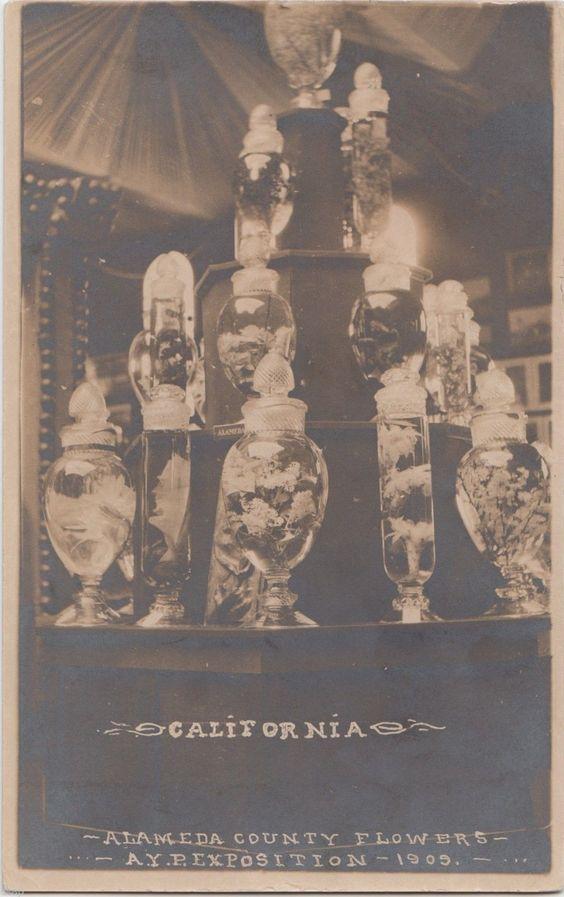 1909 Seattle Washington  California RPPC Postcard  Alaska–Yukon–Pacific Exposition