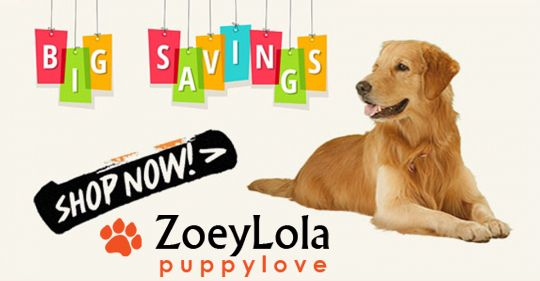 Welcome to Zoeylolapuppylove, a pet accessories Store in Encinitas, ca. Range of accessories includes pet toys, treats, foods and collars. We also deal in sale and purchase of finest dogs. Try, Zoey Lola Puppylove, the number one place for the best dog food and goodies. Our online store website - http://zoeylolapuppylove.com, Address- 533 2nd street suite 123, Encinitas, ca. 92024 Phone: 760-230-309