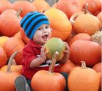 Welcome to Anderson Farms! Home of Colorado's Longest-Running Corn Maze & Pumpkin Patch.  Opening day is set for September 21, 2016!  We look forward to seeing you this fall!   Pricing and Hours Click Here How much are Pumpkins? Click Here … Continue reading ?
