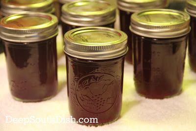 Muscadine and Scuppernong Jelly
