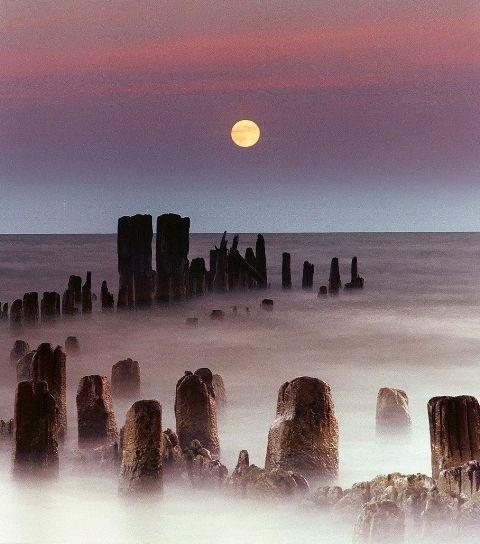 ~Moonrise~