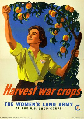 Gleaning: Women's Land Army Recruitment Posters    In 1943 the Women's Land Army (WLA), as part of the Emergency Farm Labor Program, provided agricultural labor to the nation's farmers. Under the auspices of the USDA and Extension Service, the WLA recruited, hired, and placed farm and nonfarm women over the age of 18 throughout the country during WWII