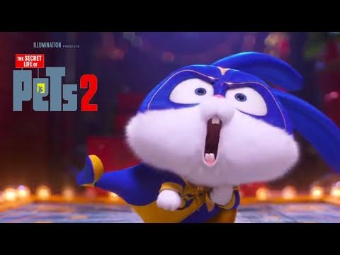 The Secret Life Of Pets 2 Snowball Best Moments Hd Animation
